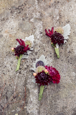 Grooms boutonniere's designed by Queen Anne's Flower Shop