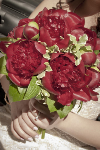Bride carrying a red peony bouquet