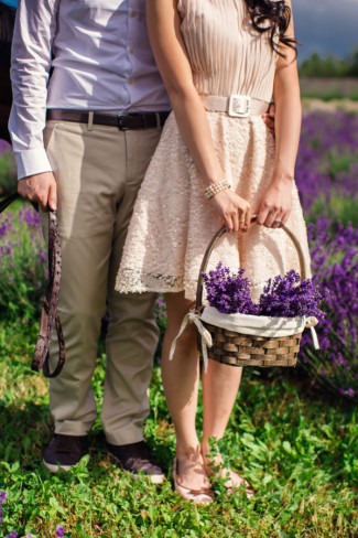 She holds basket of fresh lavender while he holds horse reign in lavender fields