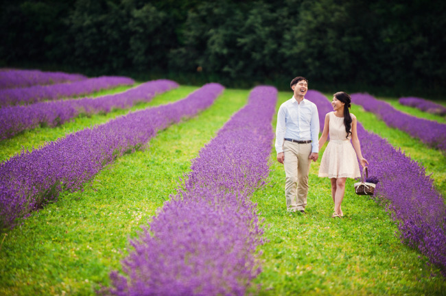 Romantic engagement shoot in lavender field at Terre Bleu