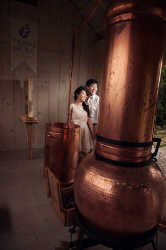 couple view the copper still at Terre Bleu