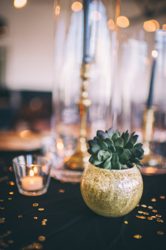 Succulent plant in gold round vase for wedding reception decor