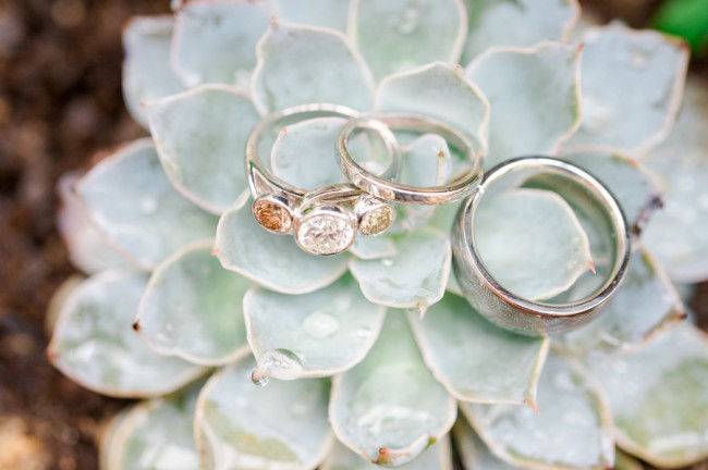 Engagement ring with three stones and men's wedding band on a succulents