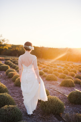 Bride standing in lavender fields at Rancho Mirando watching the sun come up from horizon