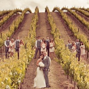 Murietta's Well Vineyard bridal party