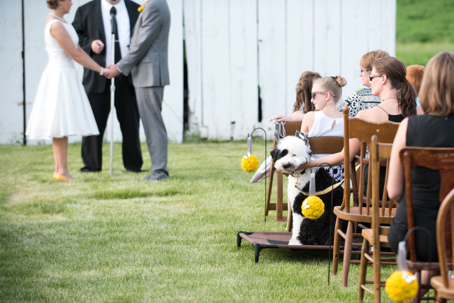 Outdoor wedding ceremony in front of a barn and mismatched chairs