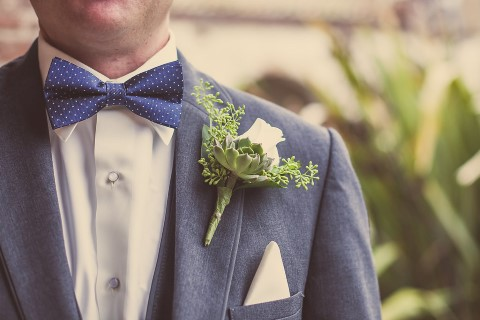polka dot blue bie tie with rose succulent boutonniere