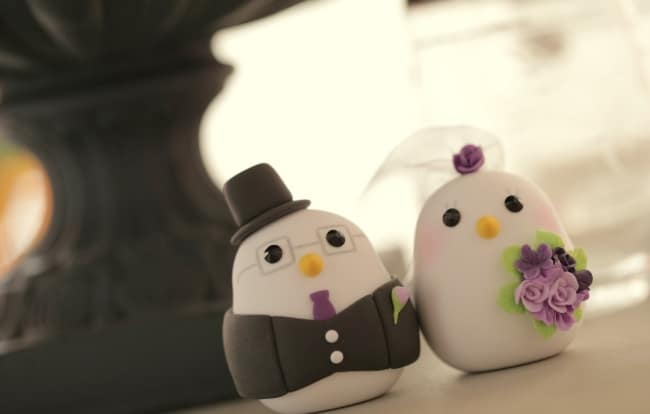 Love bird wedding cake topper with tailed coat and veil