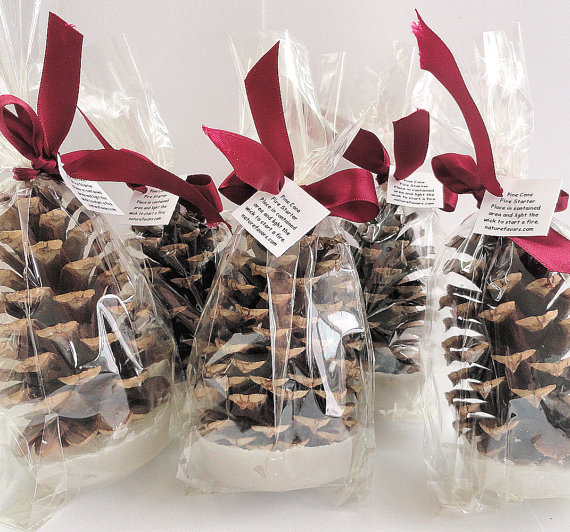 Christmas wedding favors pine cone fire starters