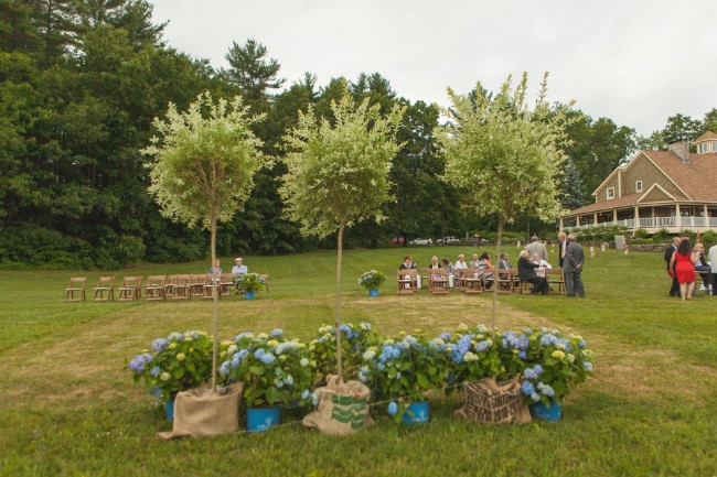 Outdoor backyard wedding ceremony with 3 trees and blue hydrangeas for the altar