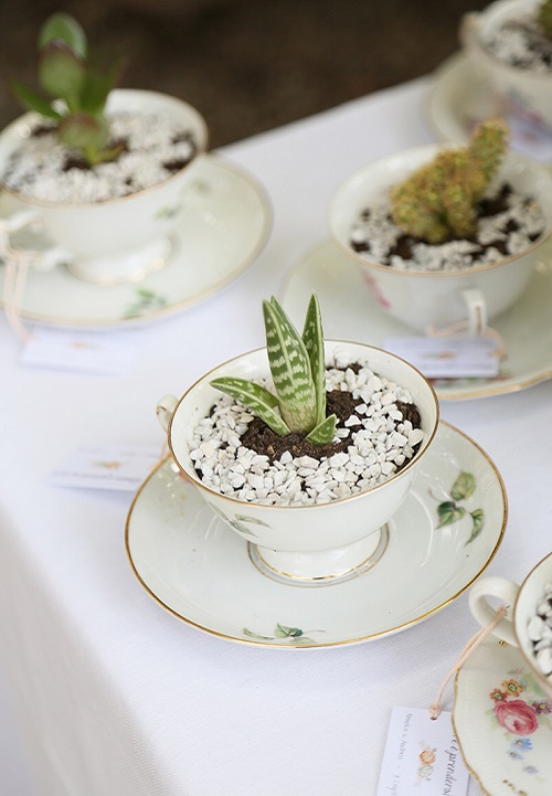 Tea cup wedding favors with small live plants