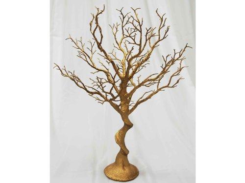 Manzanita Tree by Balsa Circle