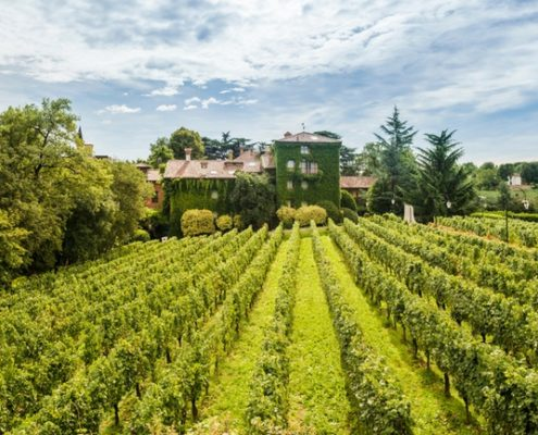 L'Albereta Relais & Chateau Review – Romantic Vineyard Resort