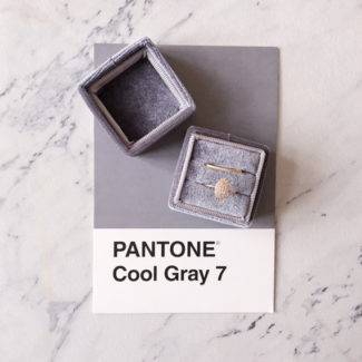 Pantone Cool Gray Ring Box ...