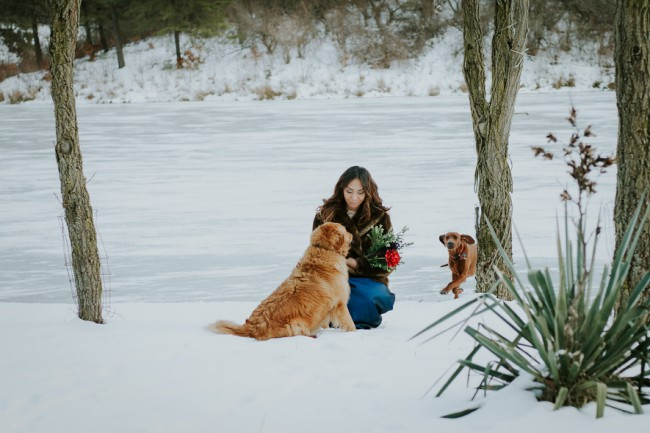 bride in snow with dogs