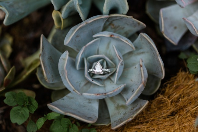 pear shaped diamond ring on succulent