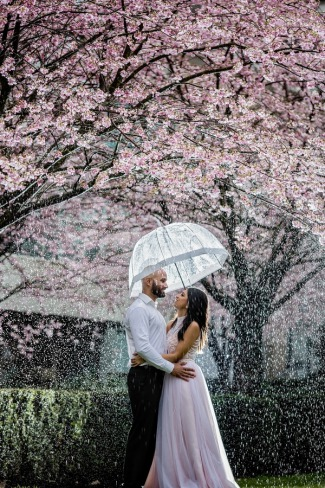 standing under umbrella with cherry blossom rain