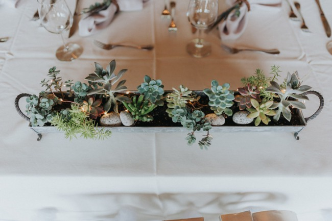succulents in white planter box on table
