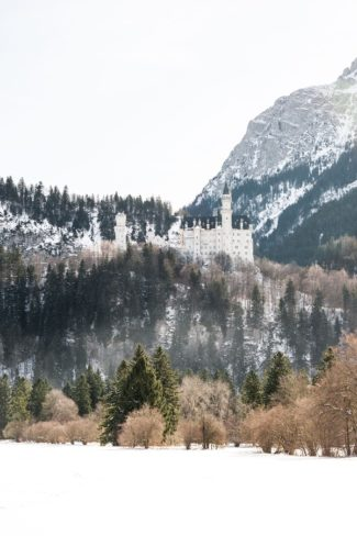 Neuschwanstein Castle on snowy hill