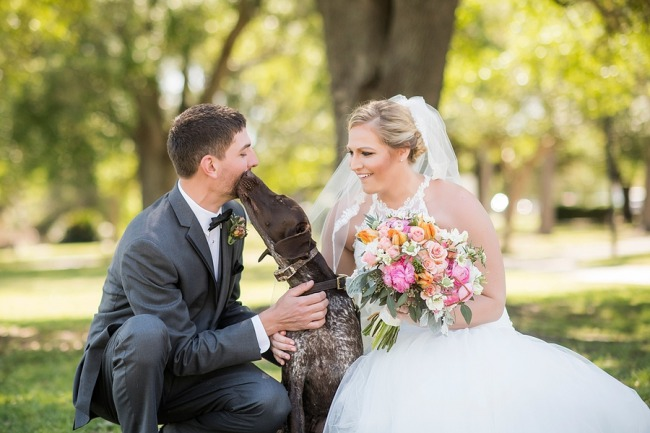 newlyweds with pooch