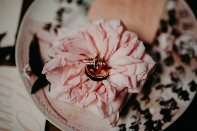 wedding bands on pink flower
