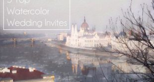 budapest river watercolor image feature