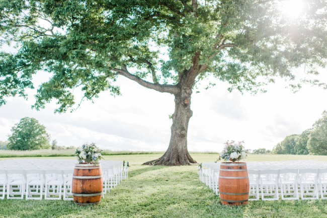 giant tree ceremony with chairs