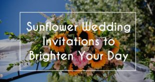 sunflower wedding invites featured