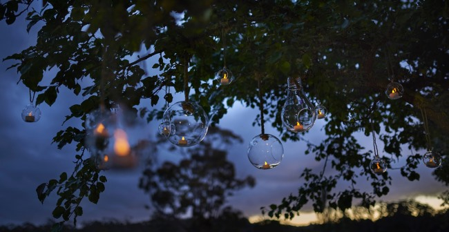 glass terrariums hang at dusk