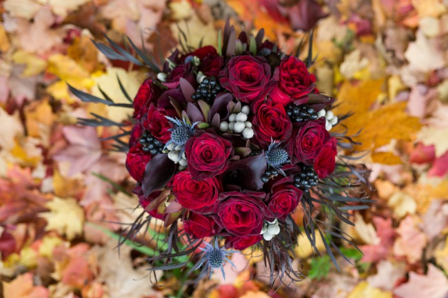 red rose and blue thistle bouquet