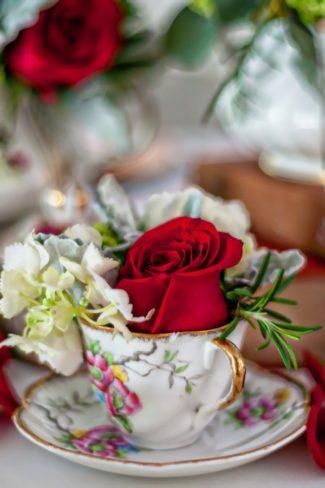 red rose in teacup
