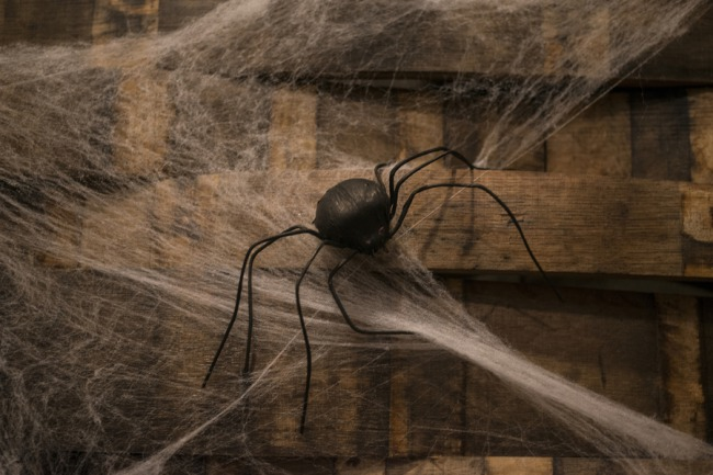 spider and web Halloween decor