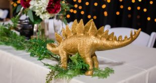 gold stegosaurus on table