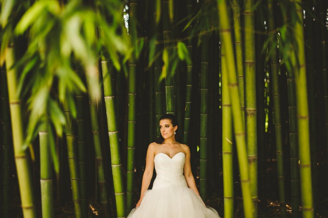 bride in bamboo forest at Biltmore