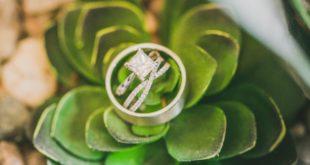 diamond ring pic on succulent