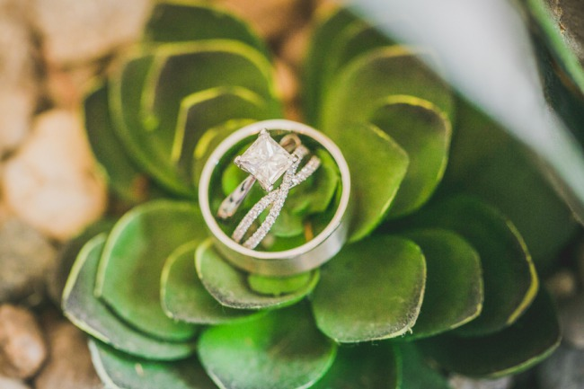 diamond ring pic on succulent