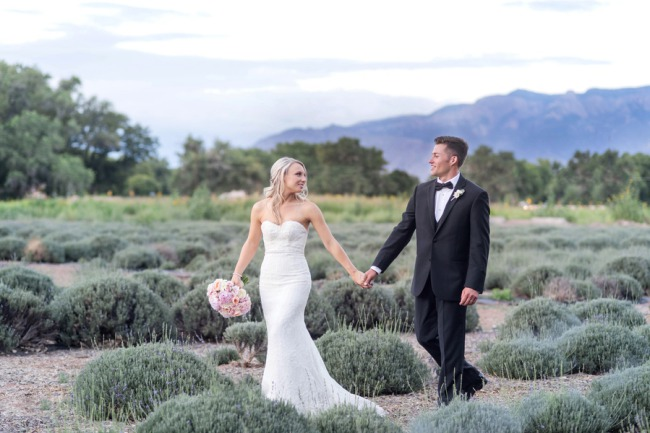 newlyweds walk in lavender field
