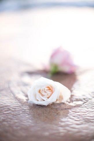 singel roses