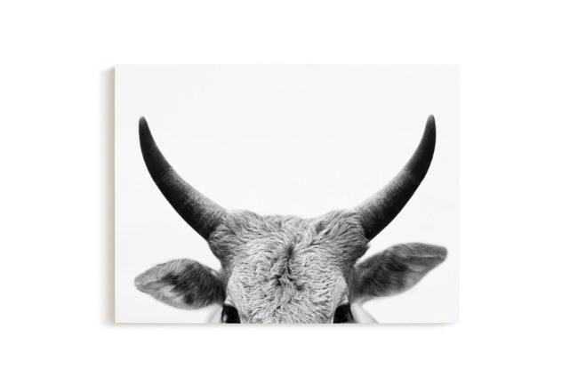 cow horns canvas wall art