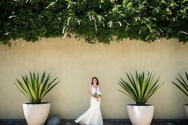 Intimate Winery Wedding in Healdsburg featured