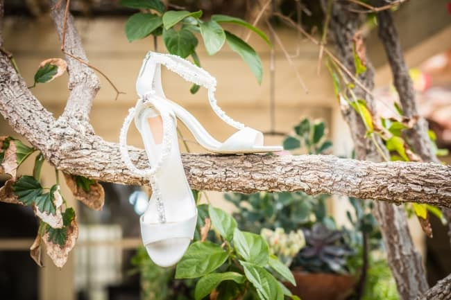 white satin heels on tree branch