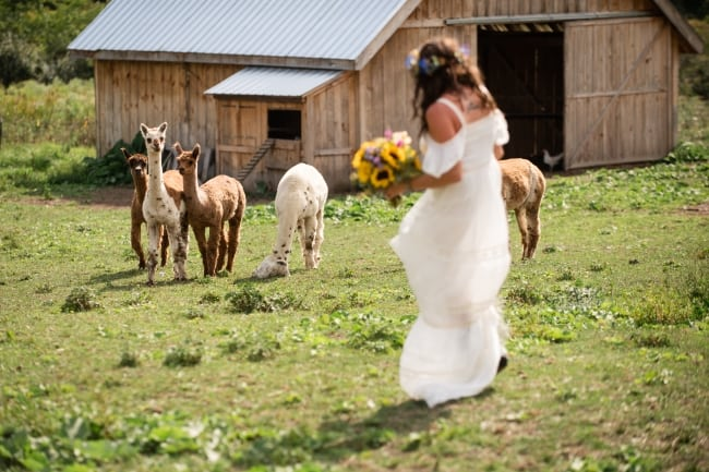 Adirondack Barn Wedding with a Boho Vibe feature