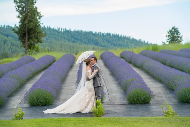 Lavendar & Gray Colors for Rustic Farm Wedding feature