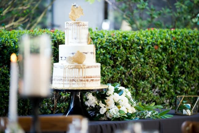 A Bee-utiful Themed Wedding in Tampa feature