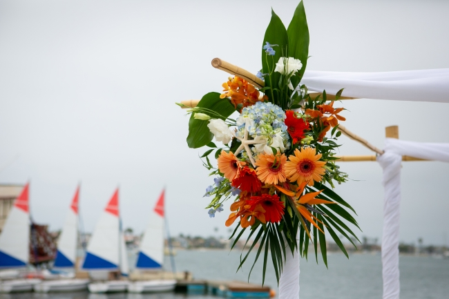 Sea World & Beach Wedding Fun! feature
