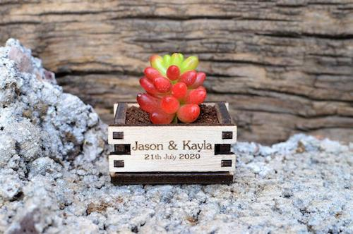 Wooden succulent box with wedding details