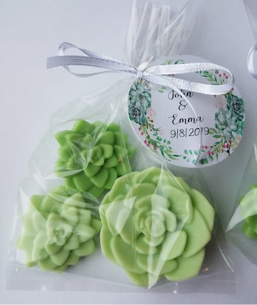 Green succulent-shaped trio of soaps