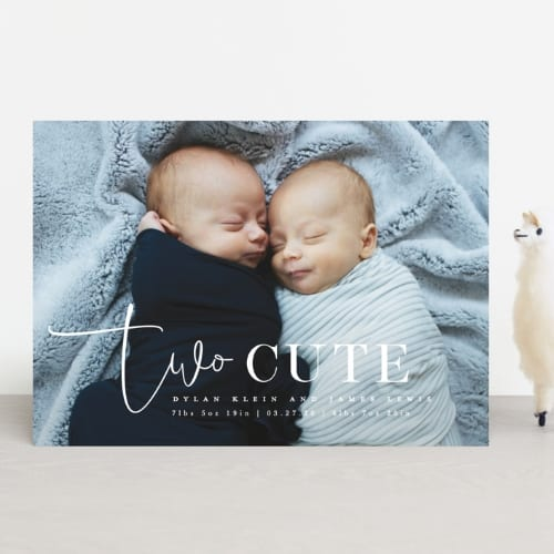 newborn twins baby announcement card