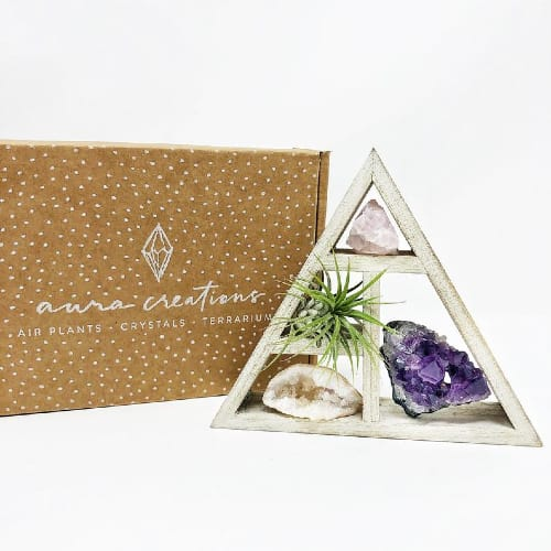Mini Crystal and Air Plant Gift Set