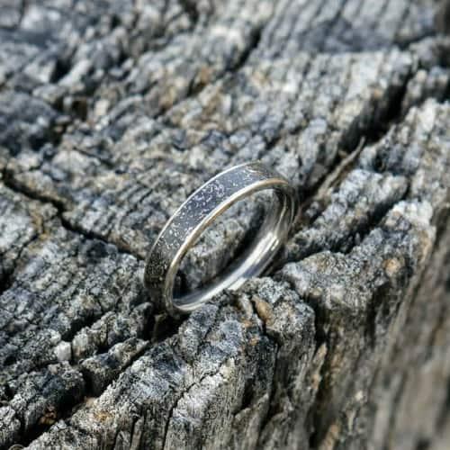 Titanium & Meteorite Ring